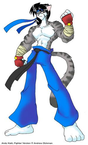 Fighter Katt