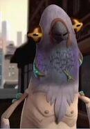Pigeon 67