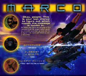 Animorphs 1999 calendar november marco