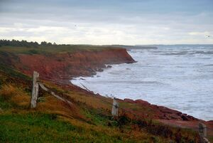 P.E.I. coastline