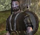 Conarch Warrior