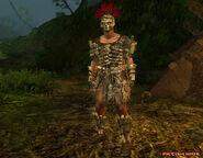 Pictish Hide