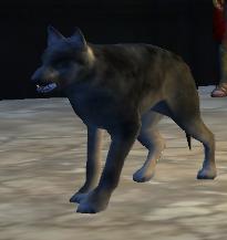 File:Wolfhound-1-.jpg