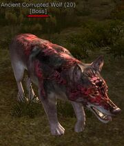 Ancient corrupted wolf
