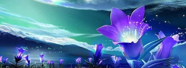 File:Abstract-purple-flowers-facebook-cover-timeline-banner-for-fb.jpg