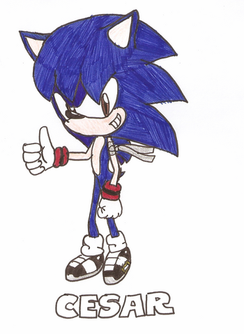 File:Cesar the hedgehog by cesarthehedgehog-d3htw64.png