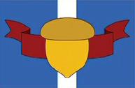 MobotropolisFlag
