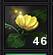 Moonbell Flower