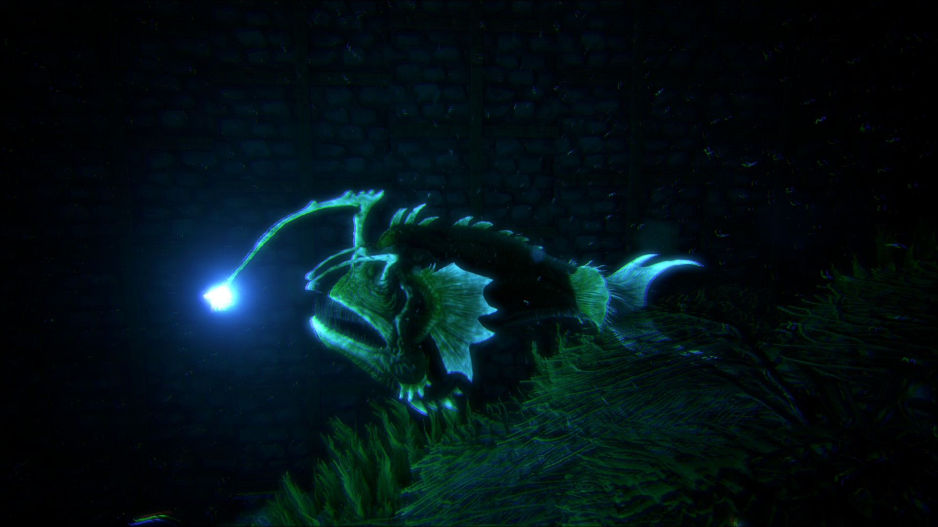Image ark angler ark survival evolved wiki for Angler fish ark