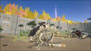 ARK-Skelesaur Stegosaurus 002