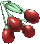 File:Tintoberry.png
