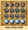 Potion-of-perfect-health