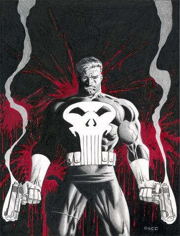 File:Punisher.jpg