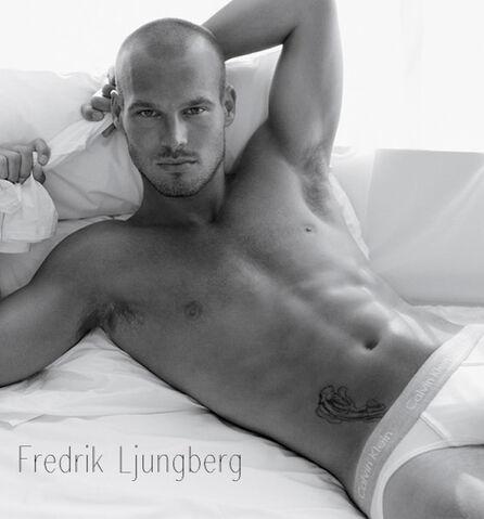File:Fredrik-Ljungberg2.jpeg