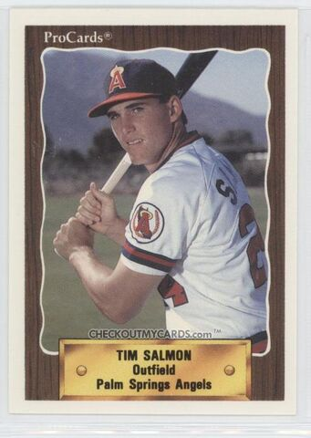 File:Player profile Tim Salmon.jpg