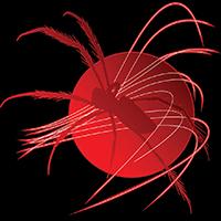 Shamir RaviRavi Emblem