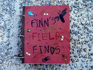 Finn-Field-FindsGallery1