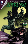 Arrow chapter 12 digital cover