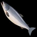 File:Salmon (ToV).png