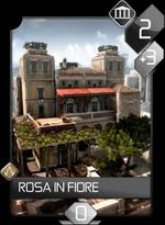 ACR Rosa in Fiore