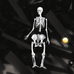 A hominid skeleton being altered with an Apple of Eden