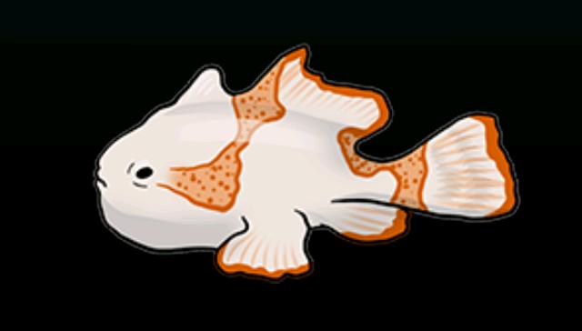File:FrogfishACP.png