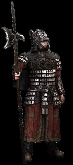 Guard-varangian-ACR.png