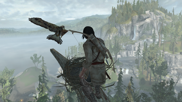 File:ACIII-FeathersandTrees 2.png