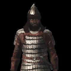 一位撒拉森队长