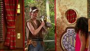 Everglades & Ally-Gators (401)