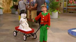 Nelson's Miami Snowman