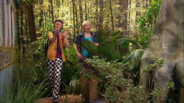 Everglades & Ally-Gators (188)