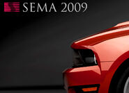 2010saleens281preview 03