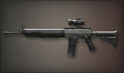 Weapon Assault Rifle SG556