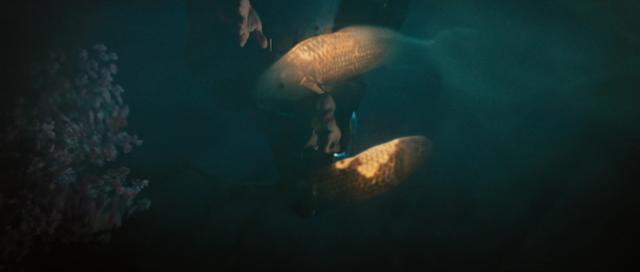 File:Film - Ocean and Moon Spirits.png