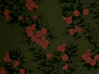 File:Red berries.png