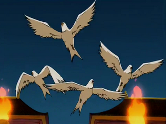 File:Doves.png