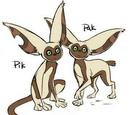 Pik and Pak