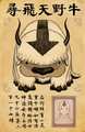 Lost Appa flyer.png