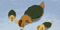 Pato tortuga