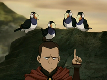 Sokka with toucan puffins