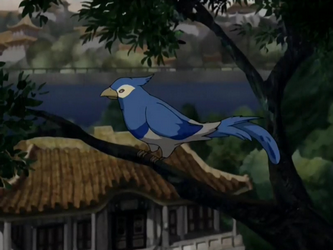 File:Blue jay.png