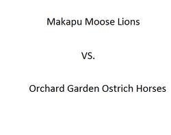 Makapu Moose Lions vs. Ostrich Horses