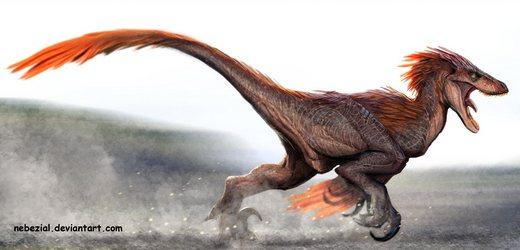 File:Velociraptor.jpg