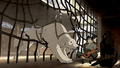 Naga freeing Asami, Bolin, and Iroh.png