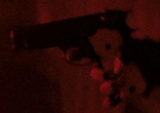 File:Vasquez's Pistol.png