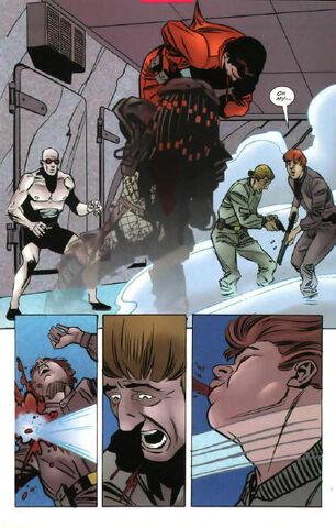 File:Batmanvspredator30131.jpg