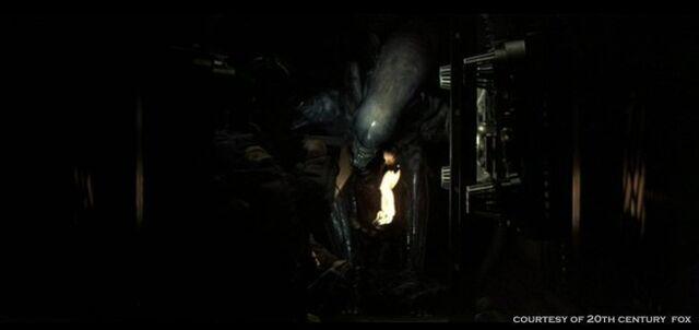 File:Alien-1979-alien-aliens-8255321-655-309.jpg