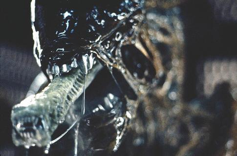 File:Alien 2.jpg