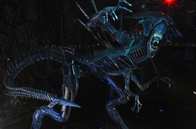 File:NECA-Alien-Xenomorph-Queen-10.jpg